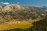 Leavitt Meadow, Toiyabe Natilonal Forest, Mono County, California