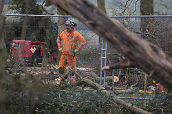 Wendover, UK. 28th April, 2021. A tree surgeon working on behalf of HS2 Ltd assists with the felling of trees for the HS2 high-speed rail link in ancient woodland at Jones Hill Wood in the Chilterns AONB. Felling of the woodland which contains resting places and/or breeding sites for pipistrelle, barbastelle, noctule, brown long-eared and natterer's bats has recommenced after a High Court judge yesterday refused campaigner Mark Keir permission to apply for judicial review and lifted an injunction on felling.