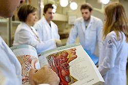 Aula de anatomia da faculdade de medicina de Porto Alegre.  FOTO: Jefferson Bernardes/Preview.com