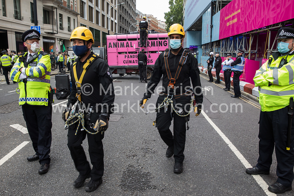 Metropolitan Police and British Transport Police officers attend to animal rights activists from Animal Rebellion who had locked themselves to the top of and inside a pink slaughterhouse truck in order to block the road outside the Department of Health and Social Care on 3 September 2020 in London, United Kingdom. Animal Rebellion activists are protesting in solidarity with victims of the global food system and to demand that the UK transitions to a sustainable plant-based food system.