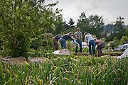 The Oregon Tilth garden crew hard at work.