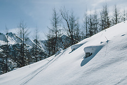 THEMENBILD - unberührte Schneedecke im Sonnenschein vor Bäumen, aufgenommen am 27. Februar 2020 in Kaprun, Oesterreich // untouched snow cover in the sunshine in front of trees, in Kaprun, Austria on 2020/02/27. EXPA Pictures © 2020, PhotoCredit: EXPA/Stefanie Oberhauser
