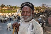 Shepherd with his flock on the main highway on 20th January 2018, Gogunda, outside the city of Udaipur, India.