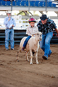 A 4-year-old boy rides a sheep as his dad gives it a nudge while mutton busting at the Rodeo of the Ozarks in Springdale, Arkansas.