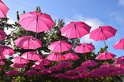 Pink umbrellas, Southern France 2021