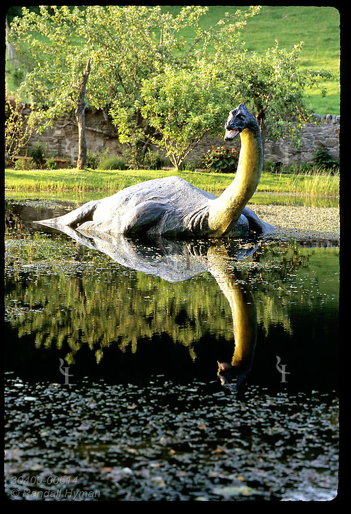 Life-size plesiosaur wades in pond outside the Loch Ness museum; (v) Drumnadrochit. Scotland