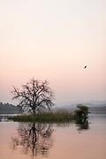 Satpura National Park at sunrise, Tawa Reservoir, Madhya Pradesh, India