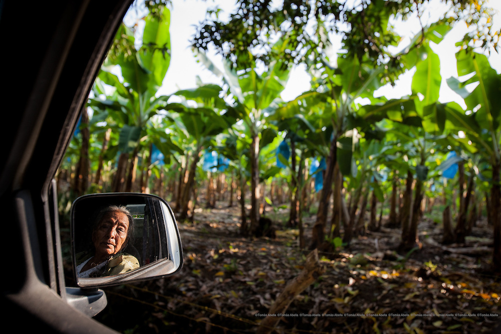 """Demetria Gutiérrez has been growing cocoa for more than fifty years. Doña Demetria, who has always refused to sell her cocoa plantation to the banana companies, is also known in her community as """"The Resistant"""". Tapachula, Mexico."""