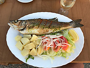 A Mediterranean dinner of grilled sole with cubed potatoes and a green salad with lettuce, tomatoes, and onions topped off with a glass of white wine