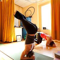Yoga Teacher Training with Amy Ippoliti