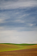 Scenic Rolling Grasslands in Palouse Washington