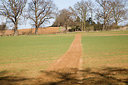 Footpath crossing field planted with crops, Sutton, Suffolk, England