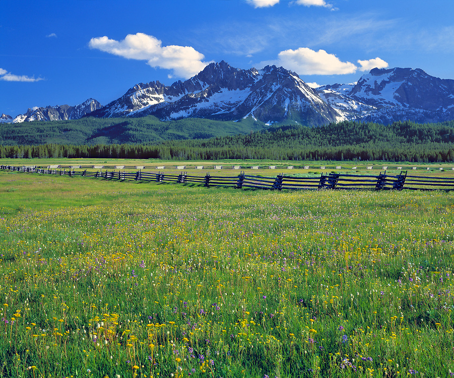 A split-rail fence marks a meadow of wildflowers with the magestic Sawtooth Range in the background, Sawtooth National Recreation Area, Idaho.