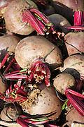 Israel, Haifa, Wadi Nisnas, Beetroots (Beta vulgaris) on display