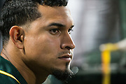 Oakland Athletics shortstop Franklin Barreto (1) watches game play against the San Francisco Giants at AT&T Park in San Francisco, California, on March 26, 2018. (Stan Olszewski/Special to S.F. Examiner)