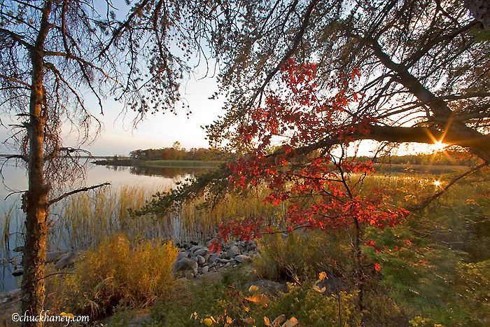 Autumn colors along Rainy Lake and Voyaguers National Park near International Falls Minnesota