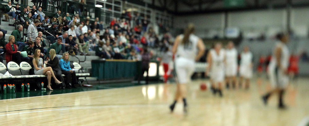 10 January 2015:  Imaged trimmed to Panoramic dimensions of Shirk Centers basketball court shot with a tilt shift lens to enhance the sweet focus spot during an NCAA women's division 3 CCIW basketball game between the Carthage Reds and the Illinois Wesleyan Titans in Shirk Center, Bloomington IL