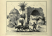 NEBY BEN YAMIN (TOMB OF THE PROPHET BENJAMIN).<br /> A Muhammedan shrine about half a mile to the east of Kefr Saba. A well of good water adjoins it. In the foreground a peasant is guiding a<br /> primitive plough and a yoke of oxen. Wood engraving of from 'Picturesque Palestine, Sinai and Egypt' by Wilson, Charles William, Sir, 1836-1905; Lane-Poole, Stanley, 1854-1931 Volume 3. Published in by J. S. Virtue and Co 1883