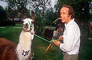 The owner of a racing Llama holds a carrot between his teeth, while holding on to number 328, his animal entrant, on 13th June 1994, at Wych Cross, Ashdown Forest, East Sussex, England. The animal is part of a herd of llamas and alpacas which compete over jumps for visiting families. The Ashdown Herd of llamas and alpacas was started in 1987. Over the years the numbers have increased and in 1995 what is now the Park was purchased, and opened to the public in 1996. The Ashdown Herd of llamas and alpacas was started in 1987. Over the years the numbers have increased and in 1995 what is now the Park was purchased, and opened to the public in 1996. There are now more than 100 south-American llamas and alpacas plus reindeer from Sweden at the Park.