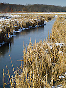 View of an icy pond and outlet stream, Fitchburg, WIsconsin, 6 March 2012.
