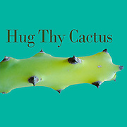 Famous humourous quotes series: Hug they cactus
