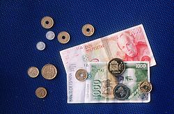 Spanish money,