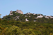 Domaine Ermitage du Pic St Loup, Chateau Ste Agnes. Pic St Loup. Languedoc. The ruins of a chateau fortress. Garrigue undergrowth vegetation with bushes and herbs. France. Europe.