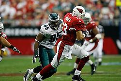 18 Jan 2009: during the NFC Championship game against the Arizona Cardinals on January 18th, 2009. The Cardinals won 32-25 at University of Phoenix Stadium in Glendale, Arizona. (Photo by Brian Garfinkel)