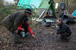 Harefield, UK. 3 February, 2020. Activists examine new plant growth at the woodland camp section of Harvil Road wildlife protection camp. Environmental activists from Save Colne Valley and Extinction Rebellion are seeking to prevent construction works for the HS2 high-speed rail link in the Colne Valley which would require the felling of hundreds of mature trees.