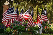 Small American flags clustered together stand in honor of fallen service men and women from past wars. Flowers are also left as rememberances and respects.