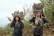 Portrait of two Akha Nuquie women wearing traditional clothing on their way to back to the village of Ban Peryenxangmai carrying firewood collected from the surrounding forest, Phongsaly province, Lao PDR. The forest around an Akha village provides its inhabitants with a number of essential products including firewood, food and building materials.