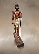 Ancient Egyptian wooden statue of Wepwawetemhat, Middle Kingdom, 12th Dynasty, (1939-1875 BC), Asyut, Tomb of Minhotep. Egyptian Museum, Turin. Cat 8786. .<br /> <br /> If you prefer to buy from our ALAMY PHOTO LIBRARY  Collection visit : https://www.alamy.com/portfolio/paul-williams-funkystock/ancient-egyptian-art-artefacts.html  . Type -   Turin   - into the LOWER SEARCH WITHIN GALLERY box. Refine search by adding background colour, subject etc<br /> <br /> Visit our ANCIENT WORLD PHOTO COLLECTIONS for more photos to download or buy as wall art prints https://funkystock.photoshelter.com/gallery-collection/Ancient-World-Art-Antiquities-Historic-Sites-Pictures-Images-of/C00006u26yqSkDOM