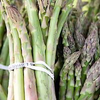 Bundles of freshly harvested asparagus at the market.