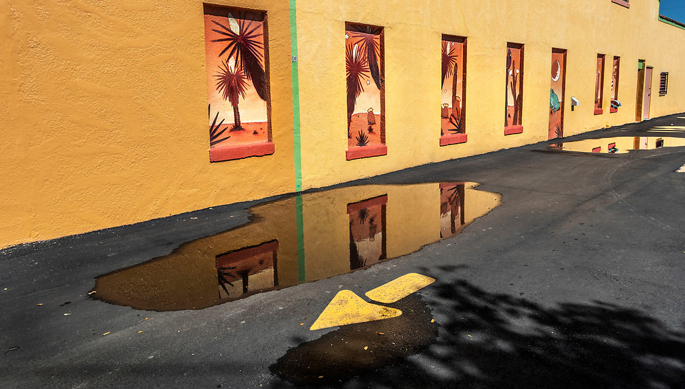 Bright yellow walls with murals, Harlingen, Texas, USA