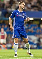 Football - 2016/2017 Premier League - Chelsea V West Ham United. <br /> <br /> Branislav Ivanovic of Chelsea at Stamford Bridge.<br /> <br /> COLORSPORT/DANIEL BEARHAM