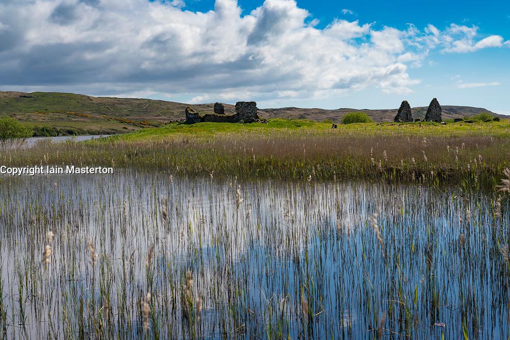 View of Finlaggan historic site through reeds on Eilean Mòr in Loch Finlaggan, Islay, Inner Hebrides, Scotland, UK