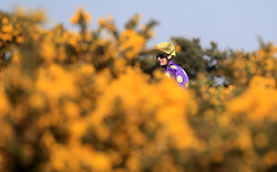 Jockey Jack Mitchell prior to the start of The Fat Larry's Burgers at Yarmouth Racecourse Handicap Stakes at Yarmouth Racecourse.