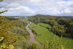 Wye Valley on the England/Wales border taken from Symonds Yat viewpoint, UK May 2021