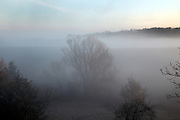 early morning fog in rural landscape