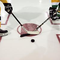 Miscellaneous Ice Hockey Photos