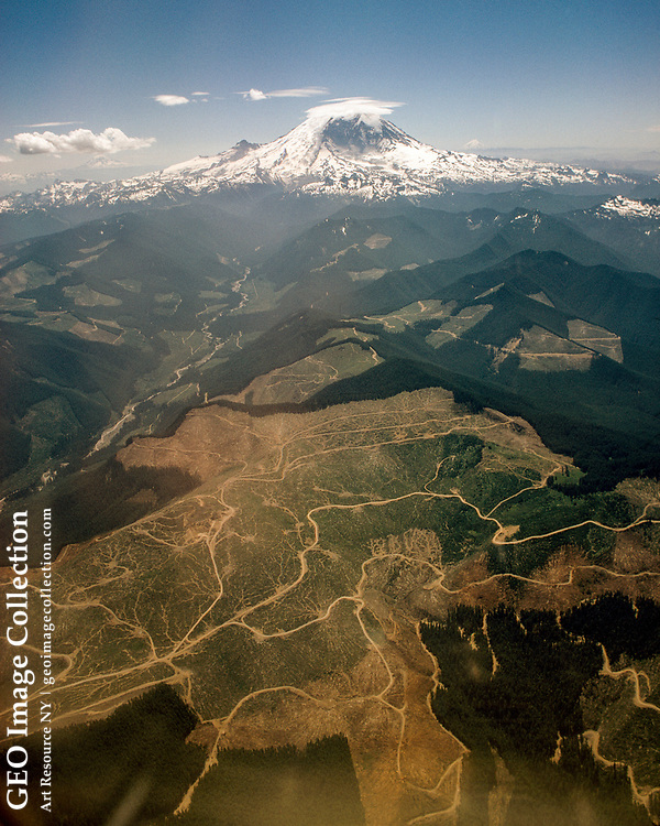 Entire hillsides show the scars of clear-cutting below Mount Rainier.