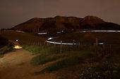 Merrell Trail Run Night Series #3 2015