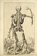 """Male full body back woodcut print at the opening of the Human Anatomy book """"Notomie di Titiano"""" Printed in Italy in 1670"""