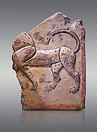 Phrygian relief plaque fragment depicting a lion . 8th-7th century BC . Çorum Archaeological Museum, Corum, Turkey .<br /> <br /> If you prefer to buy from our ALAMY PHOTO LIBRARY  Collection visit : https://www.alamy.com/portfolio/paul-williams-funkystock/phrygian-antiquities.html (TIP - Refine search by adding a suject or background colour as well).<br /> <br /> Visit our CLASSICAL WORLD HISTORIC SITES PHOTO COLLECTIONS for more photos to download or buy as wall art prints https://funkystock.photoshelter.com/gallery-collection/Classical-Era-Historic-Sites-Archaeological-Sites-Pictures-Images/C0000g4bSGiDL9rw