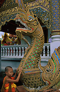 A young novice monk is inquisitive of the decorative scales of the Naga adorning the temple.