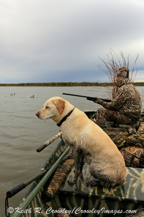 Using a row boat during a Manitoba waterfowl hunt.