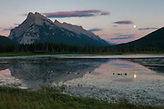 Canada geese feed on one of the Vermillion Lakes as the nearly full moon rises over Mount Rundle in Banff National Park, Alberta, Canada.