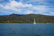 Sailing, Marlborough, South Island, New Zealand