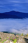 Hensley Hill & fogbank at sunrise. Purcell Mountains, northwest Montana.