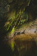Green wall of sandstone cliff along the river Loja, Gauja National park (Gaujas nacionālais parks), Latvia Ⓒ Davis Ulands | davisulands.com
